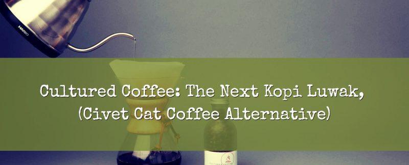Civet Cat Coffee Alternative Cultured Coffee