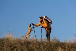 Dog, Women, Hiking Poles, Backpack