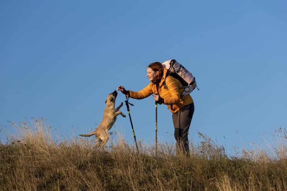 Dog, Women, Hiking Poles, Backpack