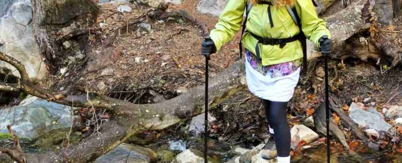 Black Diamond Distance Poles Review