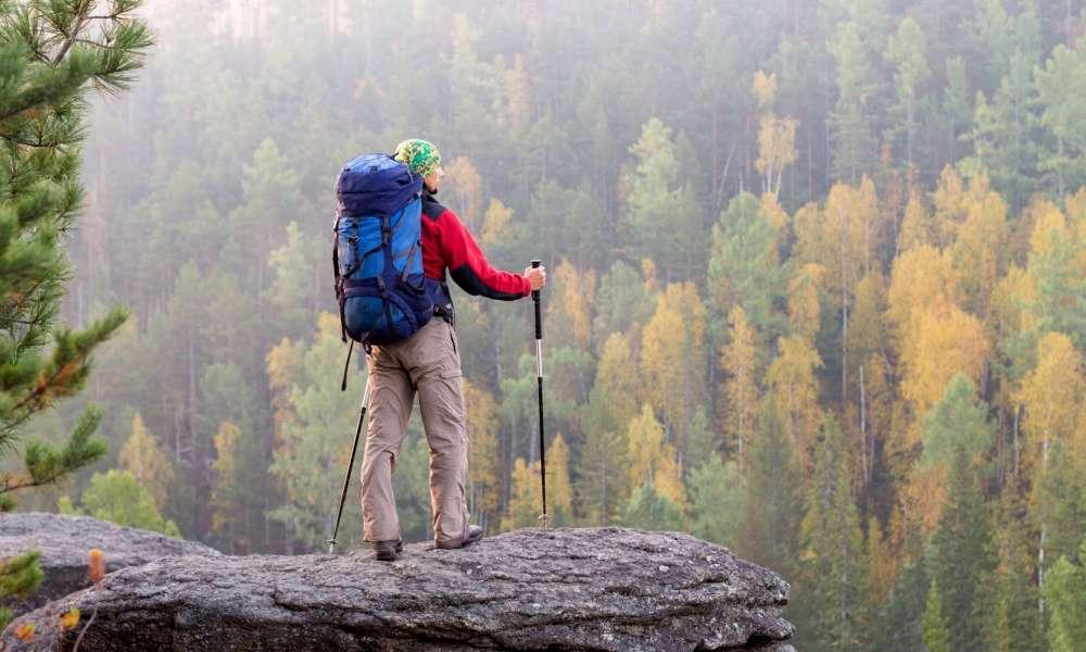 Hiker Hunger Carbon Fiber Trekking Poles Review