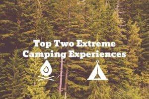 Douglas Fir backdrop camping