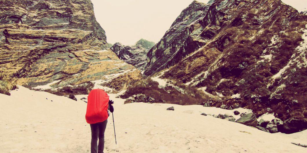 Cascade Mountain Tech Foldable Trekking Poles